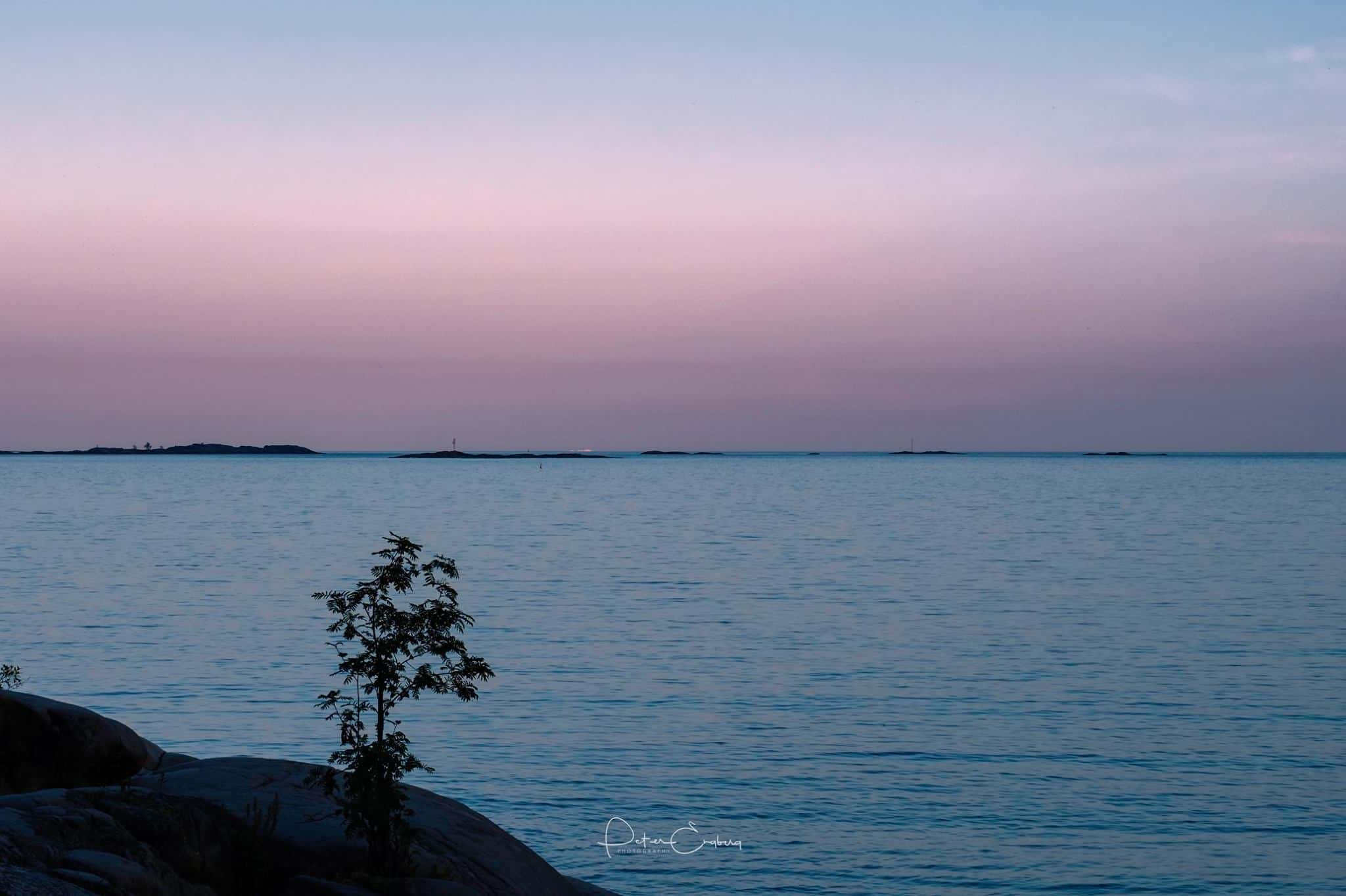 Photo of soft purple and blue sunset with silhouette of cliff and single tree in foreground
