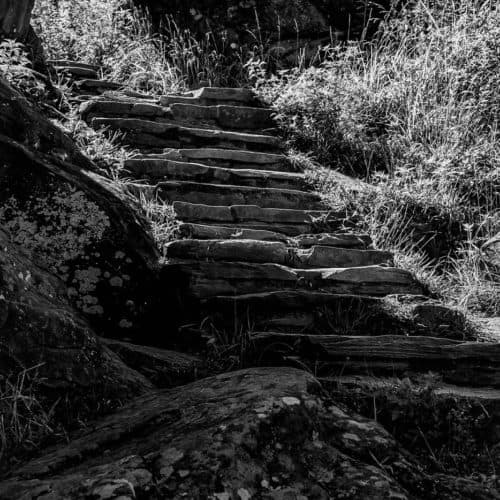 Black and white photo of stairs going up in natural environment with rocks and grass around