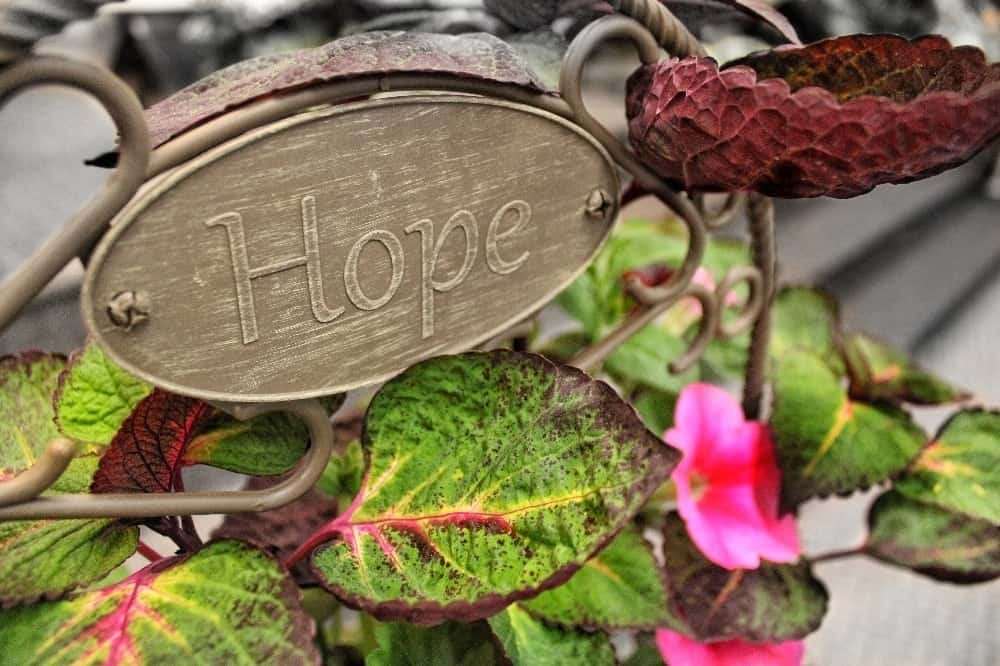 I Have Dark Days. But I Also Have Hope.
